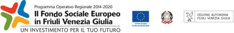 FSE 2014-2020